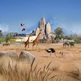 巴黎文森动物园 PARC ZOOLOGIQUE DE PARIS门票
