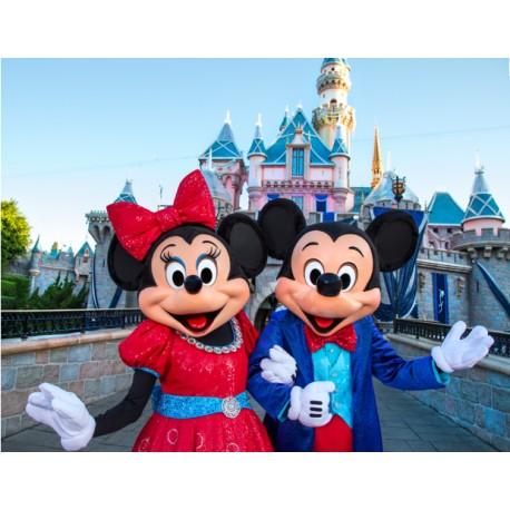 迪士尼门票1天2园65欧